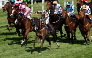 Nothing Lacking In Dalgleish Filly