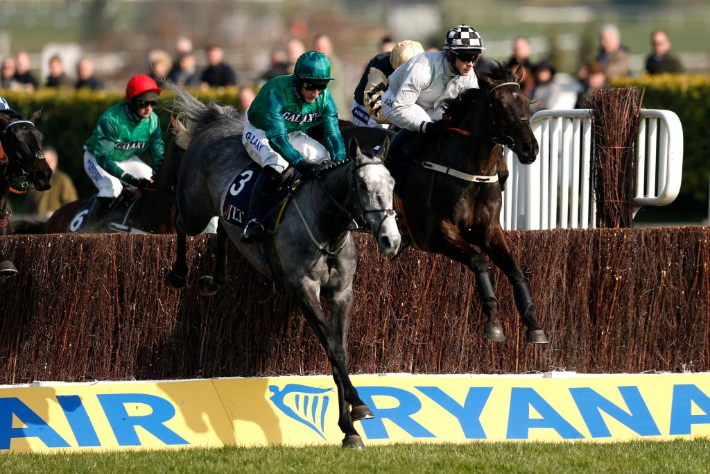 Bristol De Mai out of Grand National