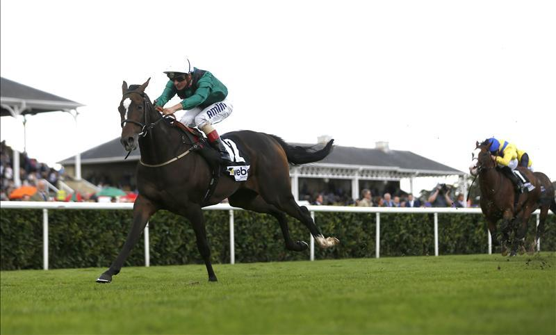 Limato ready for Newmarket bid - Bentley