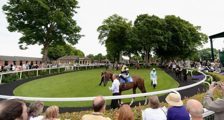 A Sprinter to Note at Ripon