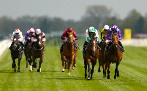 Highland Chief (centre) suffered a back injury when well-beaten in the Royal Lodge Stakes at Newmarket
