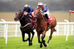 Sir Dancealot will bid to gain a first Group One victory in the Qatar Prix de la Foret (Adam Davy/PA)
