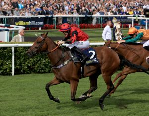 Oxted could try his hand in better company next year after this victory in the Portland Handicap at Doncaster